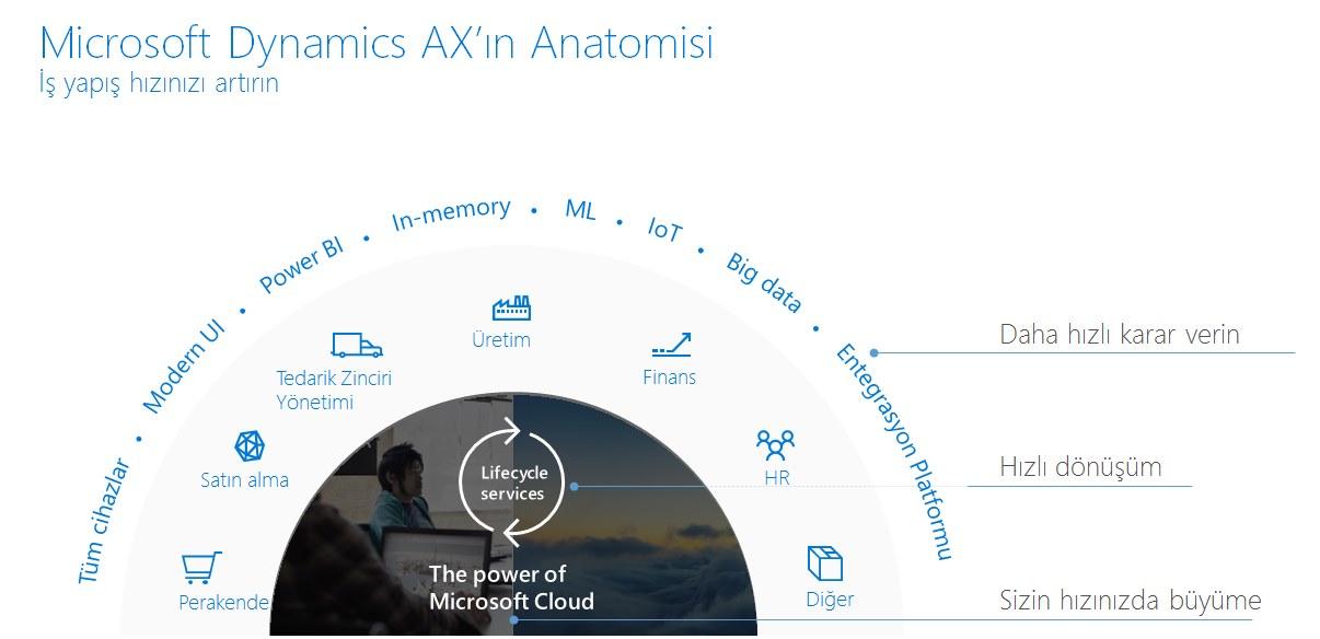 ax-anatomisi